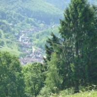 Maison D'hôtes Du Landersbach
