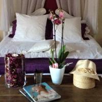 Hotel Pictures: Gîte de la Closeraie, Noyers-sur-Cher
