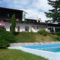 Hotel Pictures: Guest House Vltavín, Zduchovice