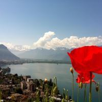 Hotel Pictures: Apartment Montreux, Montreux