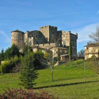 Hotel Pictures: Apartment Chateau Le Castellas Saint Bonnet de Salendrinque, Saint-Bonnet