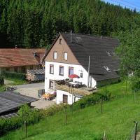 Hotel Pictures: Apartment Eisenbach 3, Eisenbach