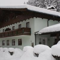 Hotel Pictures: Apartment Bründlinger, Viehhofen