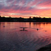 Hotel Pictures: Burrill Lake Holiday Park, Burrill Lake