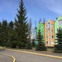 Apartment in Svetlogorsk