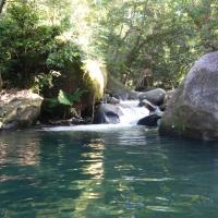 Hotel Pictures: Daintree Secrets Rainforest Sanctuary, Diwan