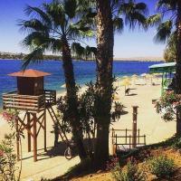 Hotel Pictures: Hostal Restaurante Los Olivos, Navalvillar de Pela