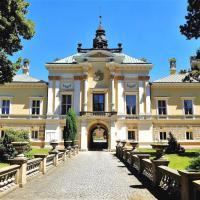 Hotel Pictures: Chateau Svetla nad Sazavou, Světlá nad Sázavou