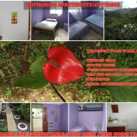 Hotel Pictures: Anthurium Apartment, Roseau