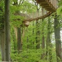 Hotel Pictures: Les Cabanes du Clos Masure, Bracquetuit