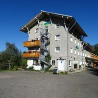 Hotel Pictures: Berghotel Jägermatt, Feldberg