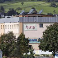 Hotel Pictures: Hotel Aventis, Wächtersbach