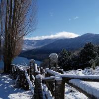 Hotel Pictures: Cabañas Epuyen, San Martín de los Andes