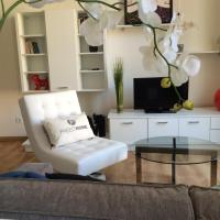 Freed'home Montpellier