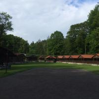 Hotel Pictures: Chatová osada Luh v Sušici, Sušice