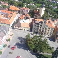 Hotel Pictures: Penzion Netolice, Netolice