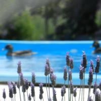Hotel Pictures: Tierra Mia Rauch, Rauch
