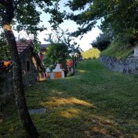 Case Iori