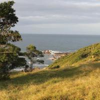 Hotel Pictures: A Pousadinha, Praia do Rosa