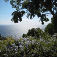 Hotel Pictures: Rental Villa Villa Crete Haute, Cavalaire-sur-Mer