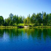 Hotel Pictures: Rozalina, Khvosty