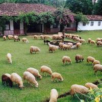 Hotel Pictures: Hotel Fazenda Fonte Limpa, Santana dos Montes