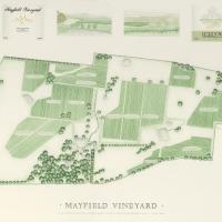 Hotelbilleder: Mayfield Vineyard, Orange