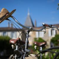 Hotel Pictures: Clos Réaud de la Citadelle, Blaye