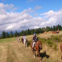 Hotel Pictures: Paradise Acres Ranch, Nanoose Bay