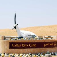 Arabian Oryx Camp