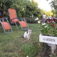 Hotel Pictures: Pendaya Eco Garden, Morphou