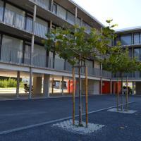 Hotel Pictures: Loft des Pommiers, Sion