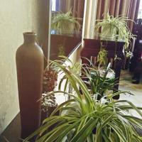 Hotel Pictures: Bourn Inn, Ninghai