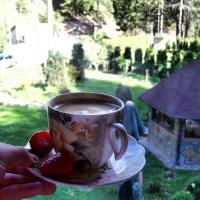 Grahovo Holiday Home