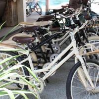 Standard Double Room with Free Bike Rental
