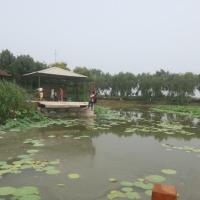 Hotel Pictures: Duoduo Farmstay, Anxin