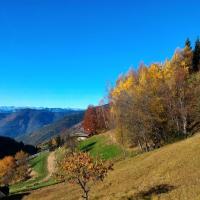 Hotelbilleder: Il Cardo Trentino, Bedollo