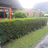 Apartment Bremerhaven 1