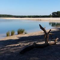 Fotografie hotelů: The Pipowagen by The Wellness Cottage, Lommel