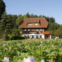 Hotelbilleder: Gasthaus Schweizerhof, Titisee-Neustadt