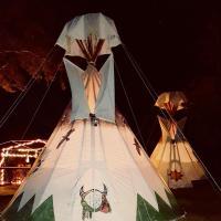 Hotellikuvia: Old Owl's Nest, Floral City