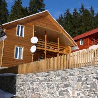 Chalet in Bakuriani