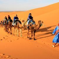 Fotos de l'hotel: Enjoy Desert Camel Trip, Merzouga