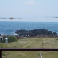 Fotos de l'hotel: Aristocat Pension, Jeju