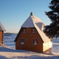 Two-Bedroom Log-House