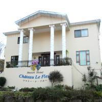 Hotel Pictures: Chateau Le Fleur, Ito