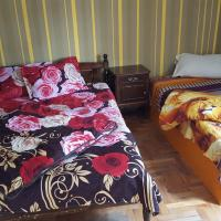 Double Room with Shared Bathroom (2 Adults + 1 Child)