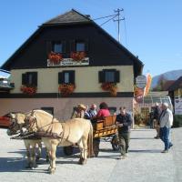 Radgasthof Schütz - Restaurant Camping Wellness