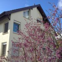 Lovely Basel Apartment