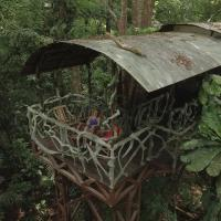 Tree House (4 Adults)